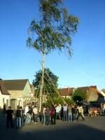 2007.04.30 - Maibaumaufstellen (16).JPG