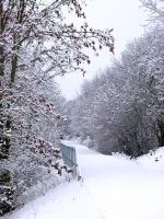 Impressionen - Winterstimmungen (05).JPG