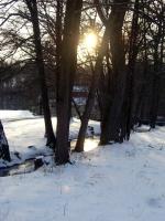 Impressionen - Winterstimmungen (12).JPG