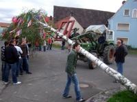 2008.04.30 - Maibaumaufstellen (16).JPG