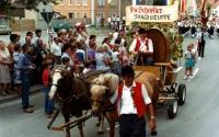 1983.07.1-3 - Kreismusikfest (039).jpg