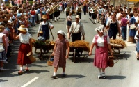 1983.07.1-3 - Kreismusikfest (056).jpg