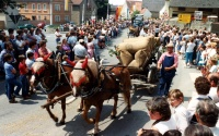 1983.07.1-3 - Kreismusikfest (064).jpg