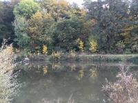 2016.10.23 - Spaziergang (08).JPG