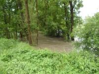 2013.05.31 - Hochwasser RBF (07).JPG