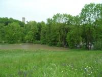 2013.05.31 - Hochwasser RBF (06).JPG